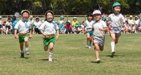 駆けっこを楽しむ園児たち