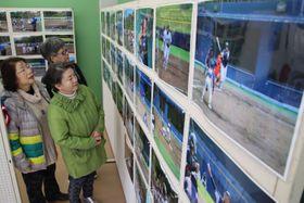 「500歳野球大会」の熱戦を振り返る企画展=阿南市富岡町の「キラキラあなん」