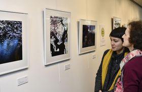 19日、パリ日本文化会館で始まった福島の桜をテーマとした写真の展覧会(共同)