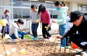 【ミツマタの枝の挿し木を植える5年生児童ら=亀山市両尾町の市立野登小学校で】