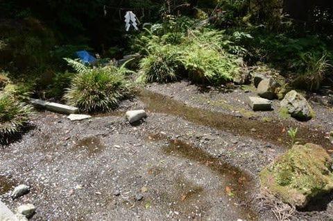 ほぼ干上がった潮井水源。住民らは「こんな姿は見たことない」と口をそろえる
