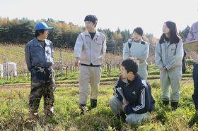 エムケイヴィンヤードの社員(左)に苗木の管理方法を質問する五所川原農林高校GAPチームの生徒たち