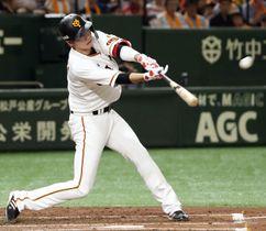 1回巨人1死、坂本勇が左中間に先制本塁打を放つ=東京ドーム