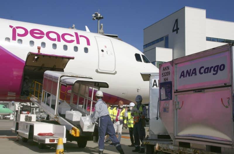 貨物便の共同運航が始まり、ピーチ・アビエーションの旅客機に積み込まれる全日本空輸の貨物=1日午前、福岡空港