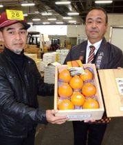 大将季を過去最高値で落札した果物店の栫井健一郎社長(左)=鹿児島市中央卸売市場青果市場