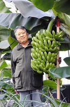 寒さに強い「もんげーバナナ」を開発した田中節三さん=岡山市で