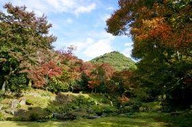 色づいた清水寺本坊庭園の紅葉