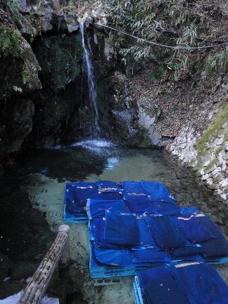■そばの実を浸すのは満願寺境内の「不動の滝」。水から上げた後、寒風にさらし、ほとんどの店で自家製粉する
