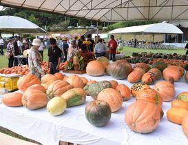 町民が育てたジャンボカボチャの大きさなどを競った「どてかぼちゃコンテスト」