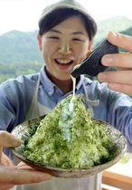 沢渡茶の濃厚な味わいが楽しめる「さわたり茶氷り」(仁淀川町のカフェ「茶農家の店 あすなろ」)