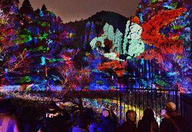 プロジェクションマッピングで木々に映し出された金魚(16日午後6時25分、京都市右京区・長神の杜公園)