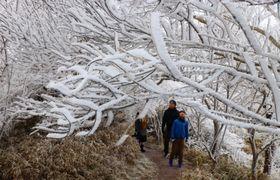 霧氷を楽しむ観光客=雲仙市、妙見岳