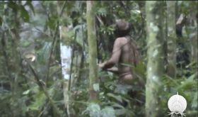 2011年に撮影された、ブラジル北部ロンドニア州のアマゾンで生活する先住民とみられる男性の映像(ブラジル国立先住民基金提供、AP=共同)