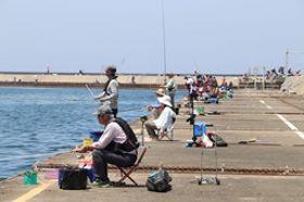 平日も県外から多くの釣り客が詰めかけている直江津港の釣り場=上越市