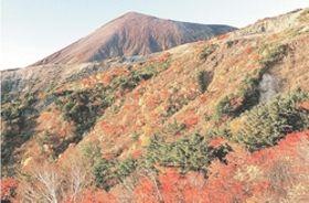 磐梯吾妻スカイラインから眺める吾妻連峰の紅葉