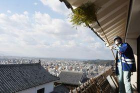ササぼうきで松山城天守最上階の軒下のほこりを落とす参加者=19日午前、松山市丸之内