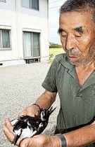 民家で見つかったセグロアジサシを抱える岩倉進さん=18日午後、掛川市三俣
