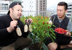 ビルの屋上で真っ赤に実ったタカノツメと、エキス入りビールをアピールする佐藤さん(左)と高田さん