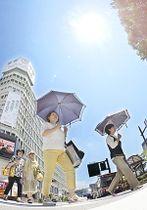 強い日差しが照り付けた県内は、各地で今年最高の気温を記録した=15日午後1時ごろ、福島市
