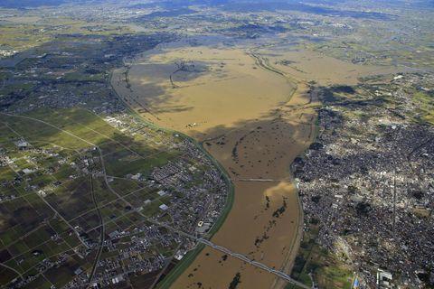 湿地保全で天然のダムに