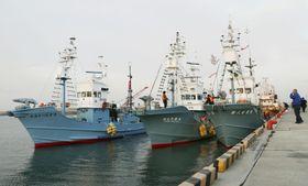 石巻漁港から出漁する小型捕鯨船=7日早朝、宮城県石巻市