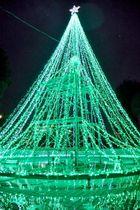 中央公園のクリスマスツリー形のイルミネーション。緑色の光が噴水の水面に映える