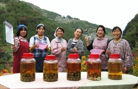 ■美郷で収穫された梅の実で作られる梅酒