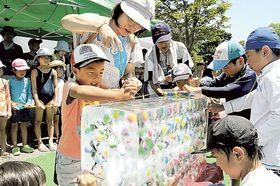 氷の板からスーパーボールを取り出すゲームを楽しむ子どもたち=浜松市西区村櫛町の浜名湖ガーデンパーク
