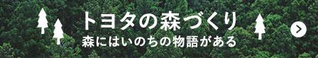 トヨタの森づくり 森にはいのちの物語がある