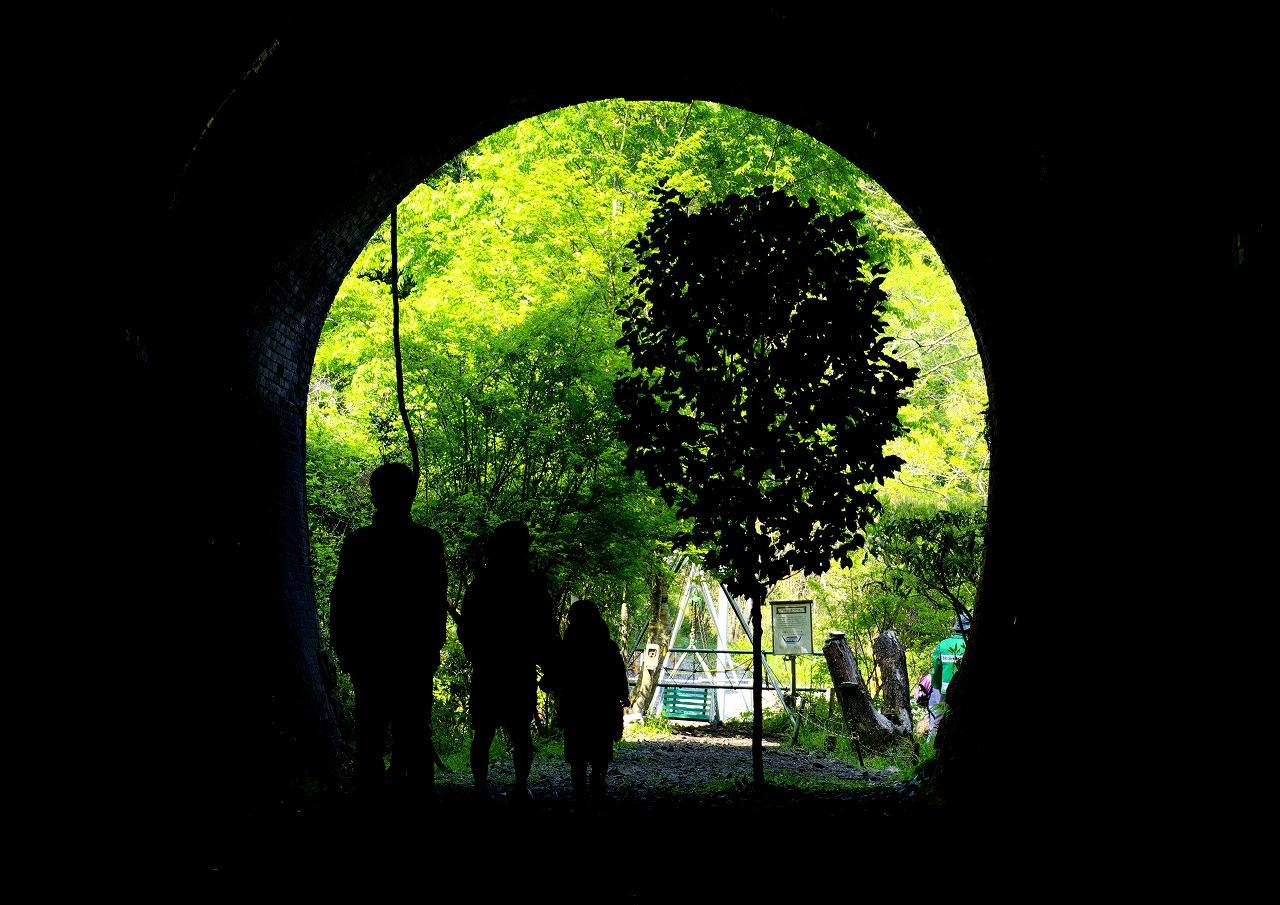 トンネルをふさぐように育った椿の木もそのまま生かした。トンネルのアーチを額縁代わりに新緑がまぶしく映る(愛岐トンネル群保存再生委員会提供)