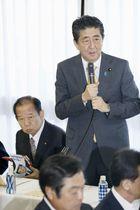 自民党全国幹事長会議であいさつする安倍首相=17日午後、東京・永田町の党本部