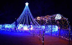【冬の夜を彩るクリスマスイルミネーション=玉城町原のアスピア玉城で】