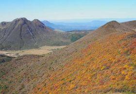 鮮やか秋色の装い くじゅう連山、紅葉見頃