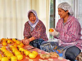 柿の皮むきを体験する参加者(右)