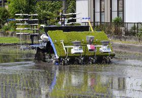 農研機構が公開した、無人運転で作業をする自動田植え機=13日、佐賀県神埼市