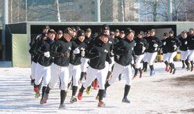 雪の残るグラウンドでランニングに汗を流す駒大苫ナイン