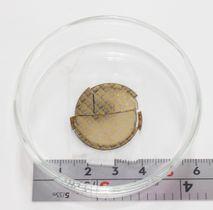 佐賀大の嘉数誠教授が作製に成功した、人工ダイヤモンドを使ったパワー半導体