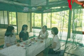 「蚊帳で女子会」学生ら企画 京都で7月8日開催