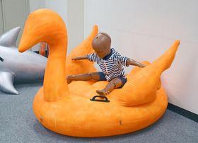 水面に浮かべて遊ぶ鳥形のフロート=17日、消費者庁