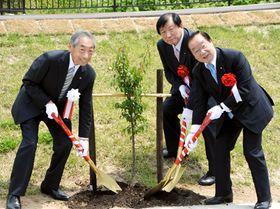 ウメの苗木を植樹する(左から)加藤会長、亀岡議員、渡辺復興相