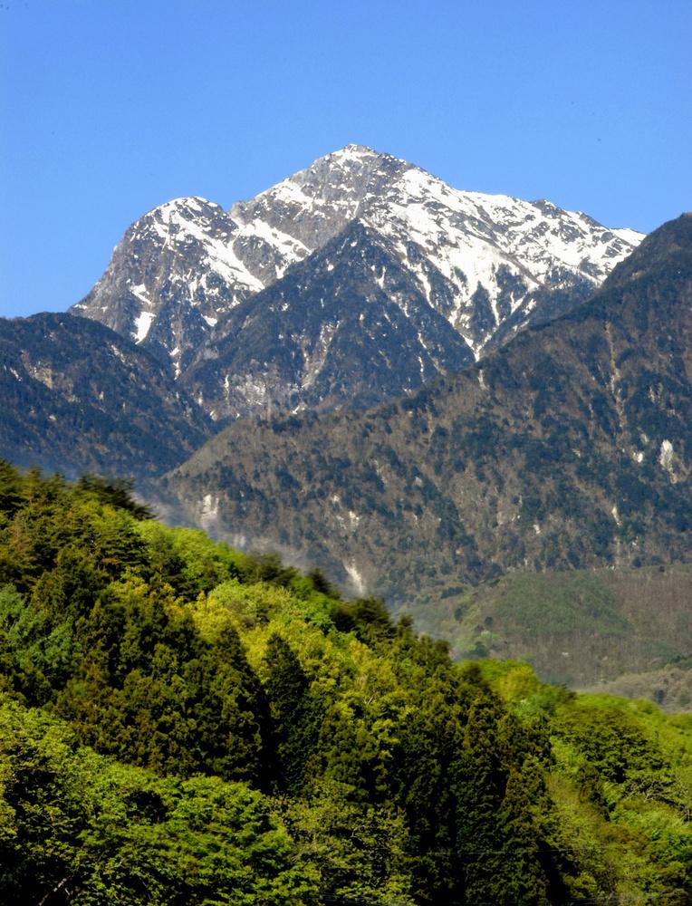 麓から仰ぎ見る甲斐駒ケ岳。山頂左側の岩峰は「摩利支天」=5月