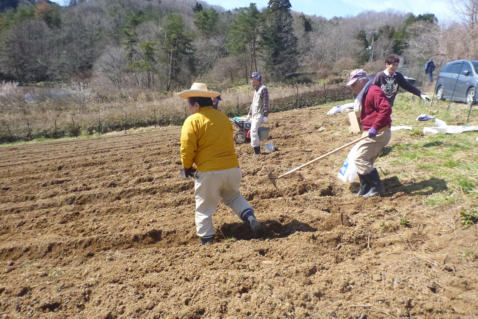 耕作放棄地でジャガイモの植え付けに取り組むメンバー=2018年3月、奈良市(きみかげの森提供)