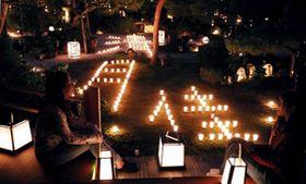 庭園に秋風、炎ゆらり 京都・東林院で夜間拝観