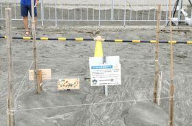 ウミガメの産卵場所を示す看板=18日、千葉県一宮町の釣ケ崎海岸