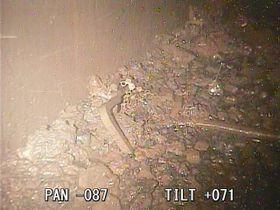 福島第1原発2号機原子炉格納容器の底で見つかった燃料集合体の一部とその周辺の溶融核燃料と思われる堆積物=1月(国際廃炉研究開発機構提供)