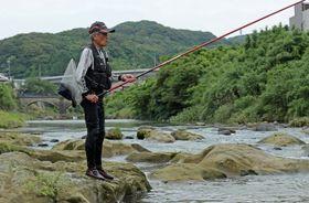 アユ釣りを楽しむ愛好家=佐世保市吉井町、佐々川