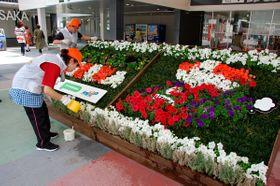 【水やりなど花壇の手入れをする、就労支援事業所の利用者=鈴鹿市山本町の鈴鹿PA「PIT SUZUKA」で】