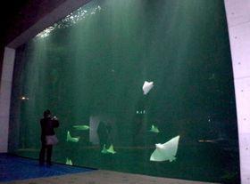 淡い照明で黒潮の海の深みを表現したという水槽