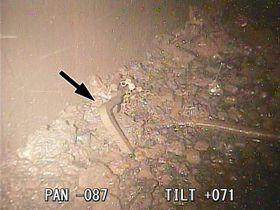 福島第1原発2号機原子炉格納容器の底で見つかった燃料集合体の一部(矢印の部分)とその周辺の溶融核燃料と思われる堆積物=19日(国際廃炉研究開発機構提供)