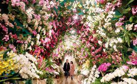 甘い香りに包まれる「蘭のトンネル」=ハウステンボス